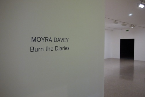 burn the diarys